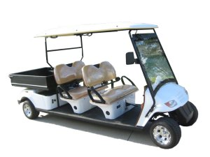 CitEcar Electro Neighborhood Buddy 4 Passenger Utility  Street Legal Golf Cart